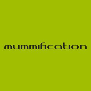 RBCblog_Tiles-Mummification1